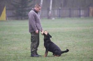 Výcvik psů, 38. Základní kynologická organizace Havířov-Bludovice
